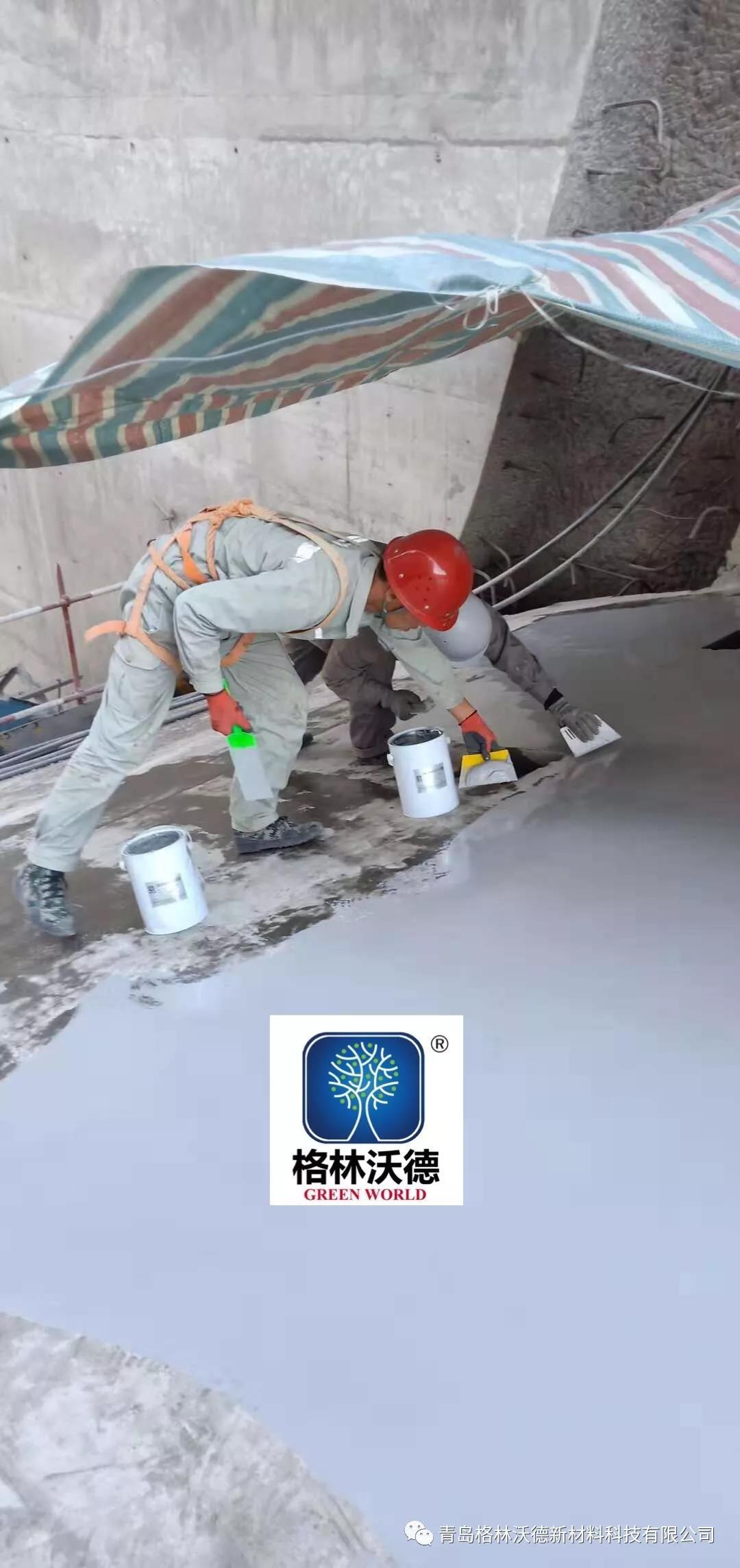 """单组份手刮涂层成功用于国家大型重点水利工程--""""吉林丰满大坝"""""""